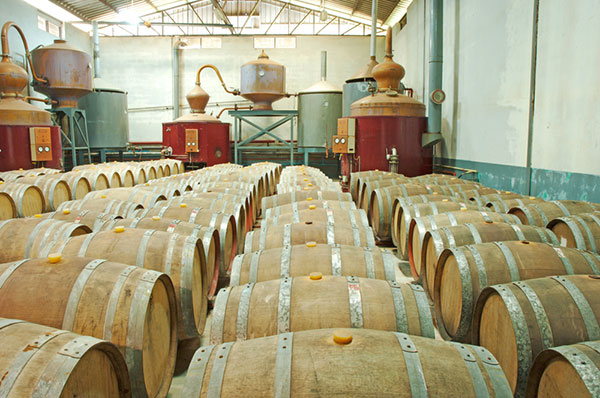 Whiskey Distillery Tours in Northern Scotland
