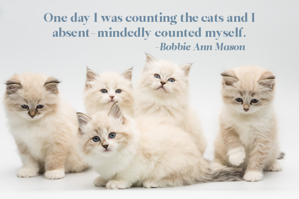 One day I was counting the cats and I counted myself - Bobbie Ann Mason