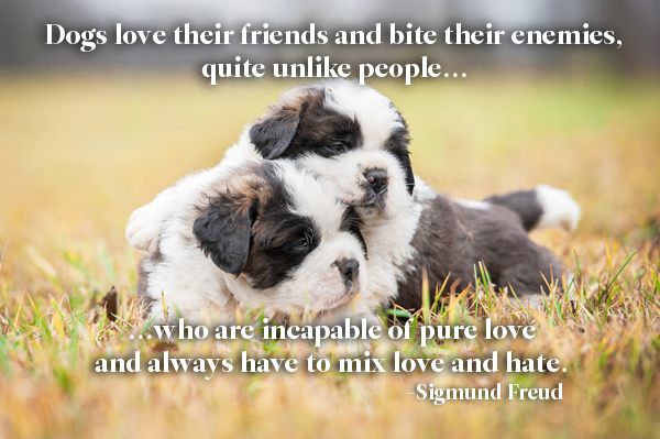 Sigmund Freud Dog Quote