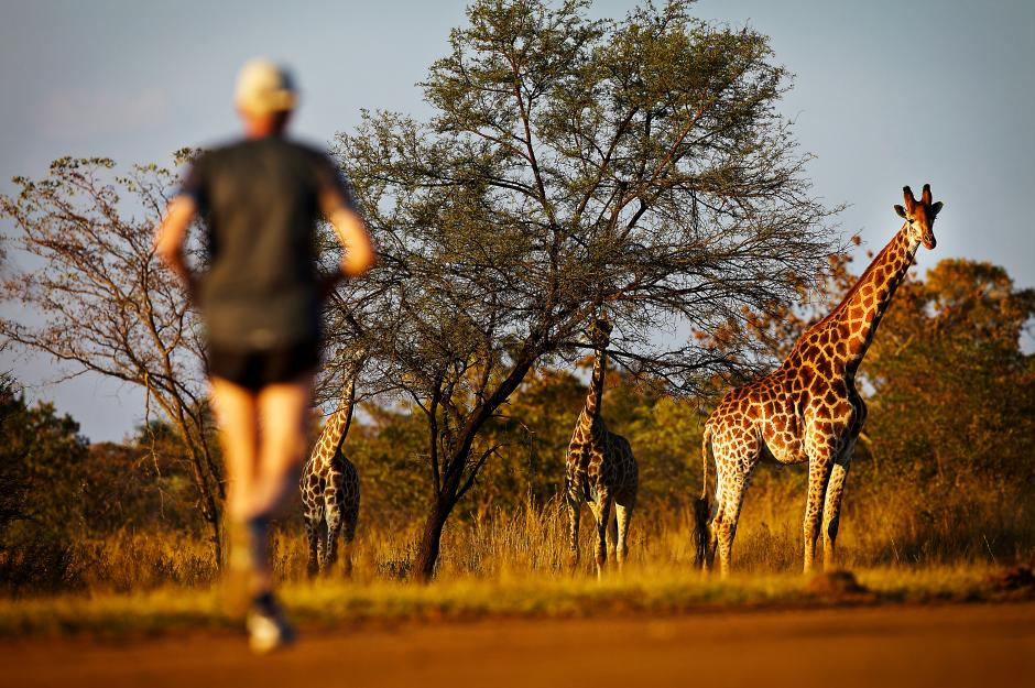 Big Five marathon