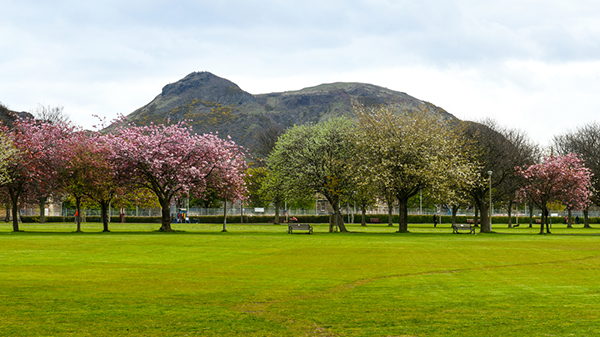 The Meadows, Edinburgh
