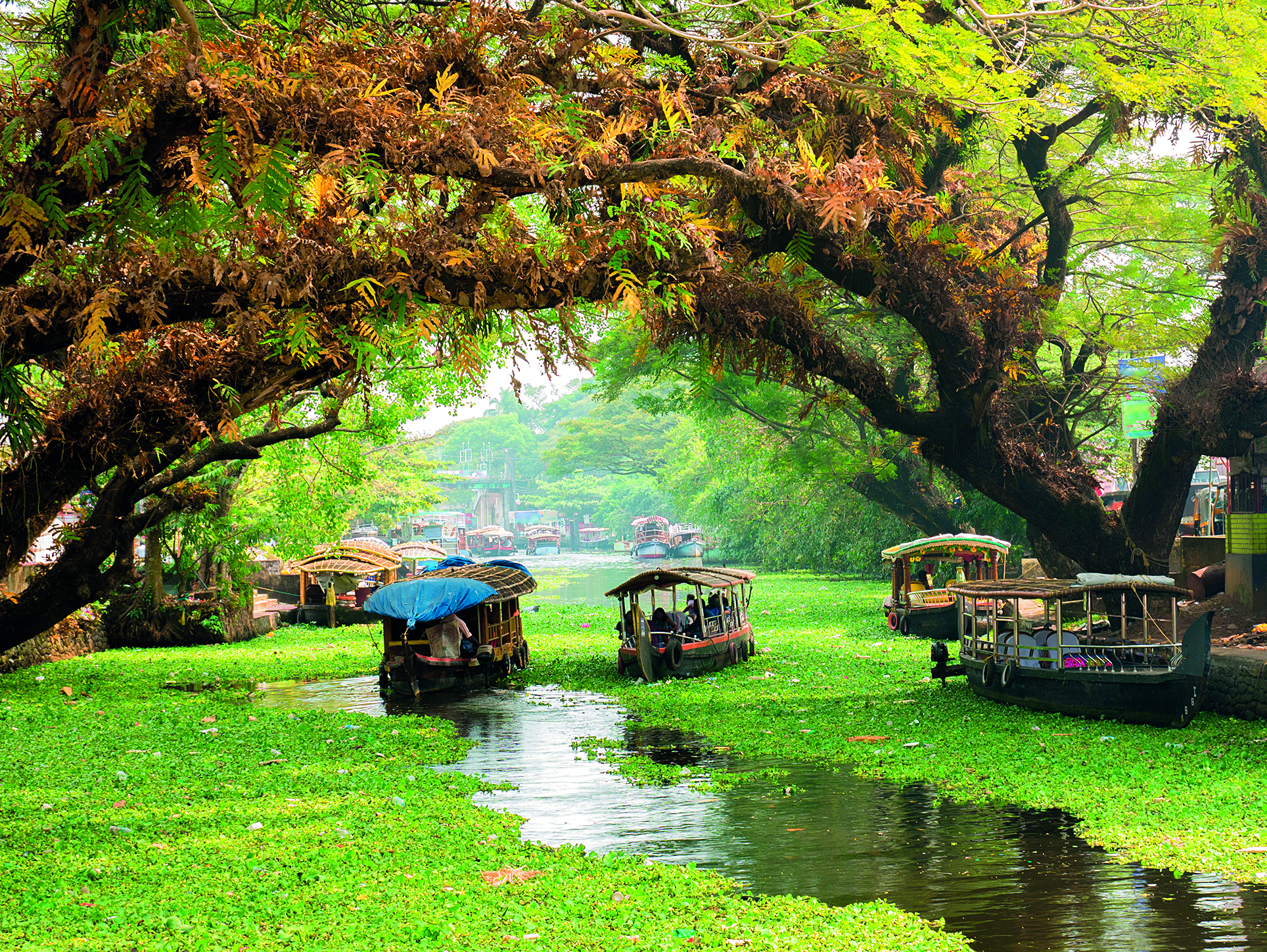 kerala river boat tour
